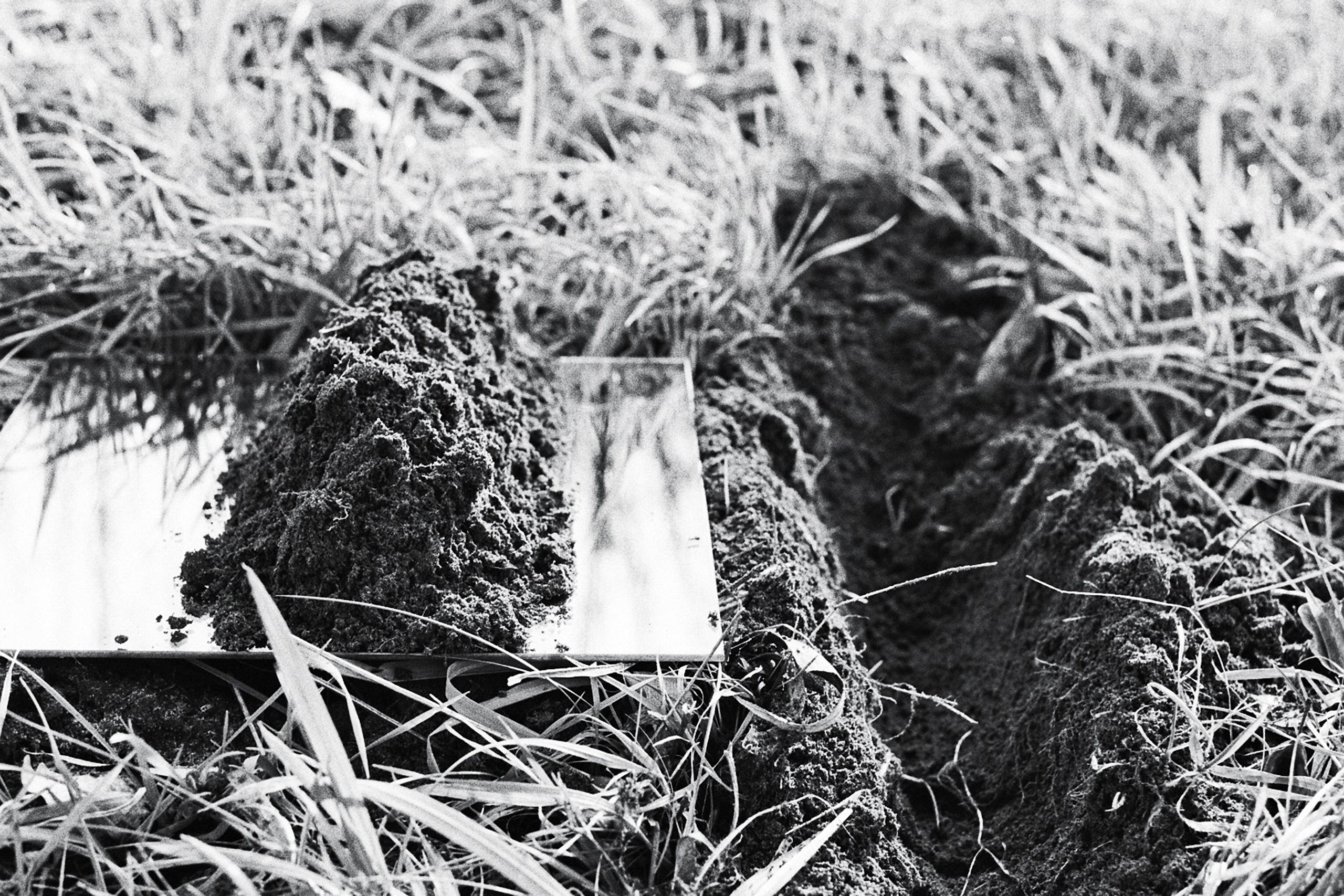Niemandsland – Clara Walter | Photo: Clara Walter