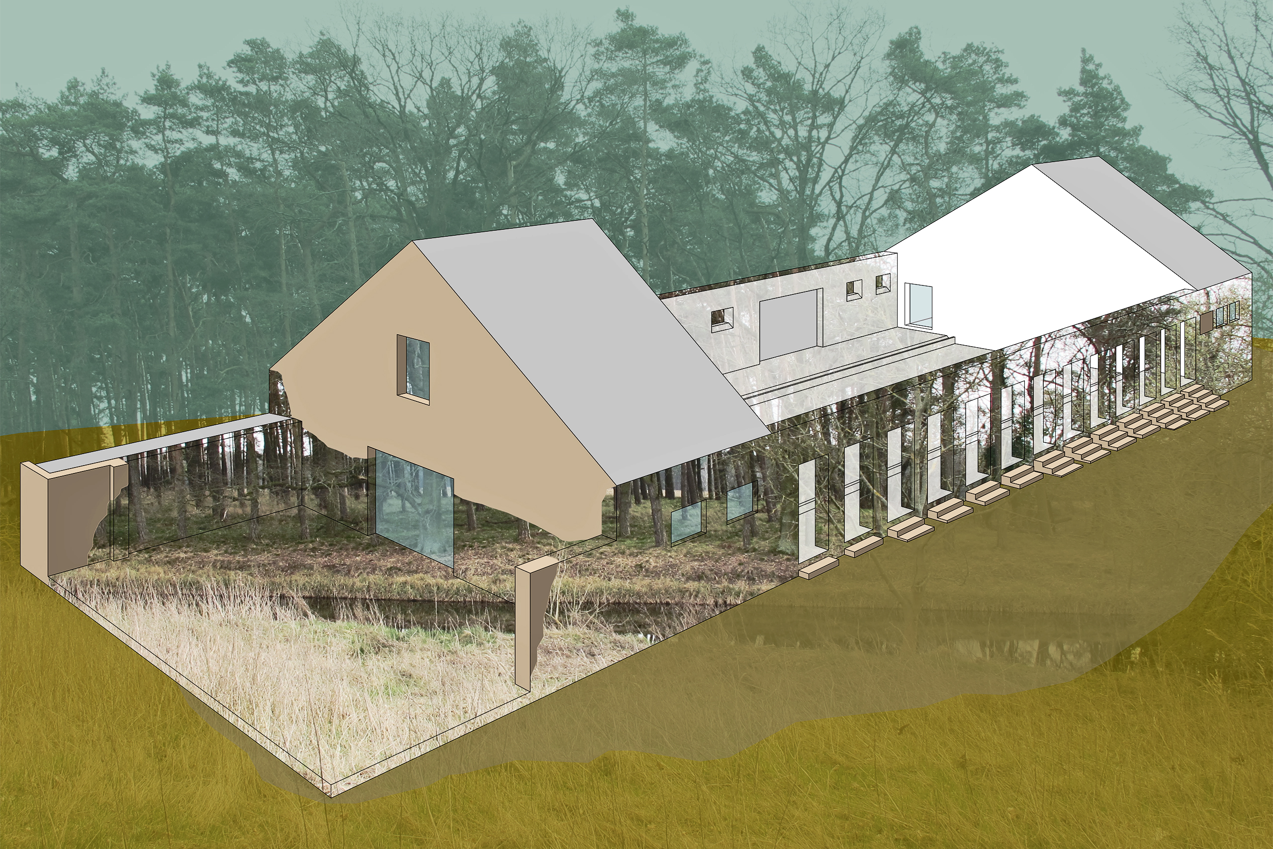 Room Without A Roof – Clara Walter (BA)   Illustration: Clara Walter