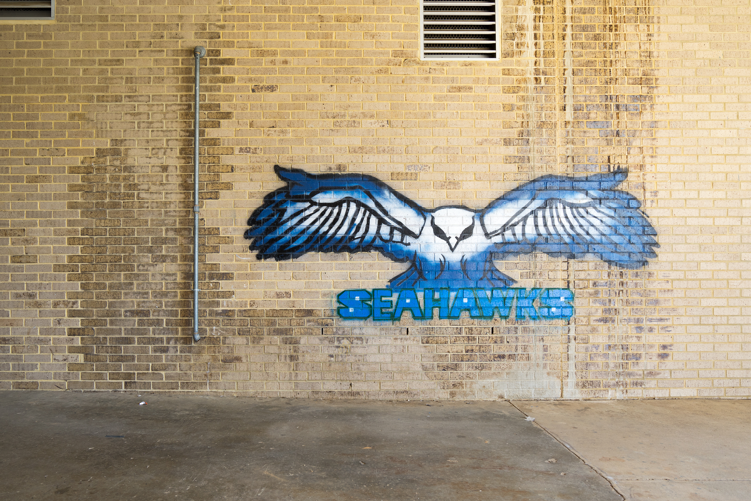South Lakes Sea Hawks – The Logo of all sports teams of the South Lakes High School in Reston, VA | Photo: Matthias Ries